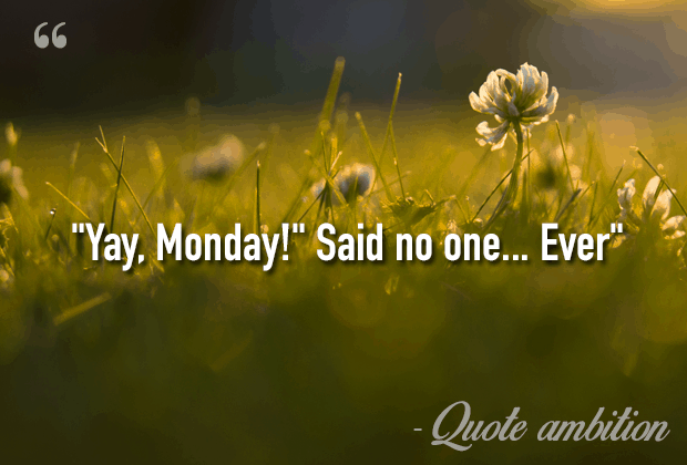 Funny Monday Quotes 85 Inspirational & Funny Monday Quotes (TOP LIST) Funny Monday Quotes