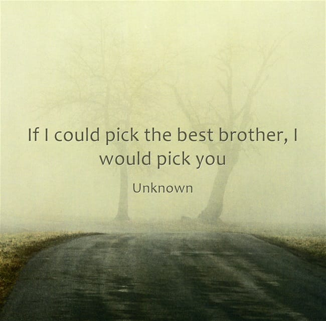 Quotes In Brother: The Greatest Brother Quotes And Sibling Sayings