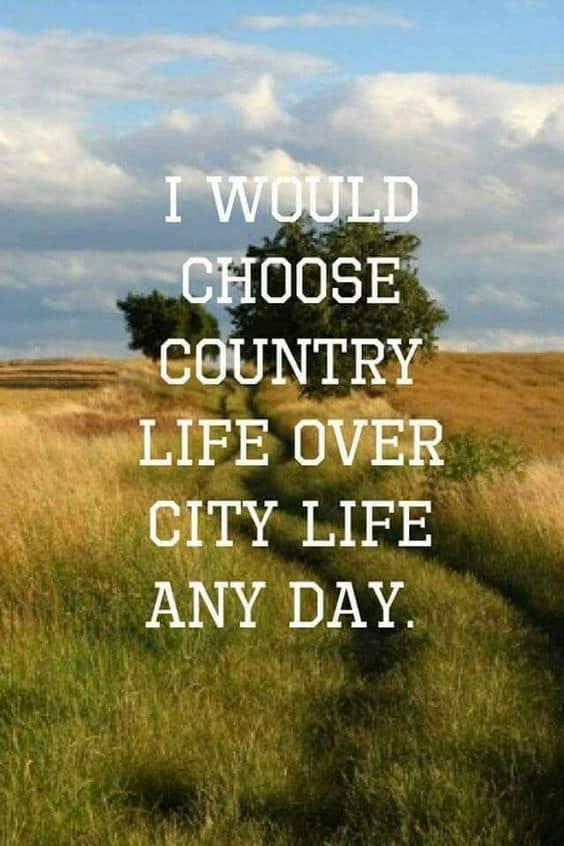 Country Quotes About Life 65+ Country Quotes on Life, Love, Music, Songs Country Quotes About Life