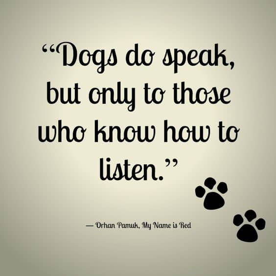 Top 60 Greatest Dog Quotes And Sayings With Images Fascinating Quotes About A Girl And Her Dog