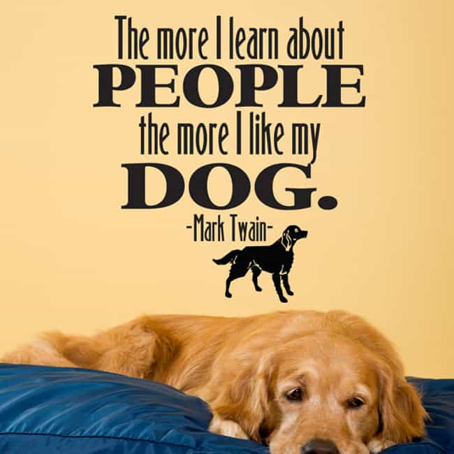 Love My Dog Quotes Mesmerizing Top 48 Greatest Dog Quotes And Sayings With Images