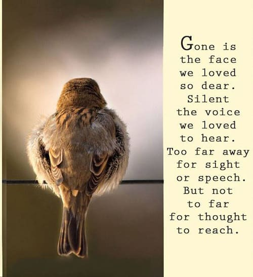 Uplifting Quotes After Losing A Loved One: 60 Sympathy & Condolence Quotes For Loss With Images