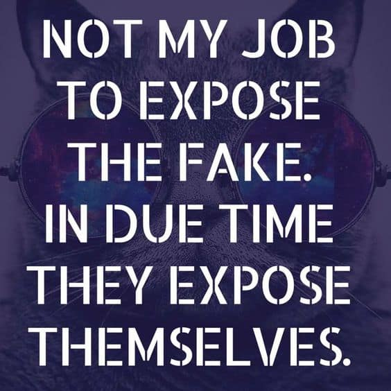 Quotes On Fake People. U201c
