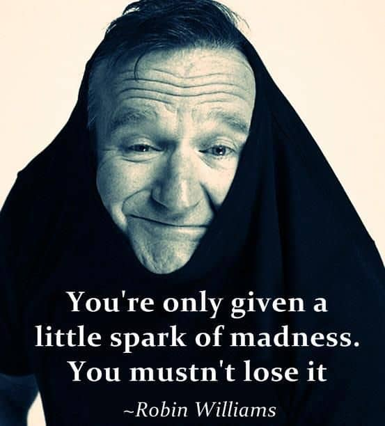 Robin Williams Quote on Madness