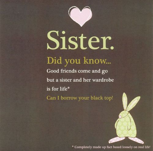 Sister Funny Quotes Interesting Top 100 Sister Quotes And Funny Sayings With Images