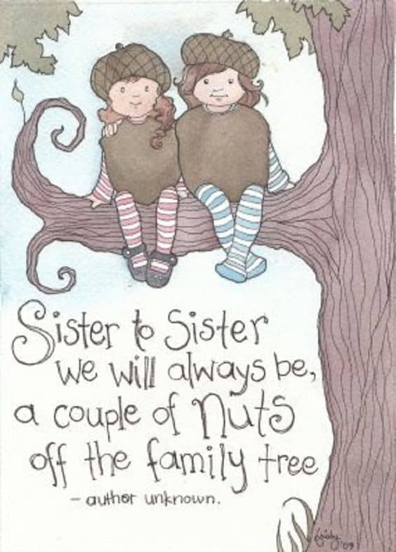 Top 60 Sister Quotes And Funny Sayings With Images Delectable Love Sisters Photo