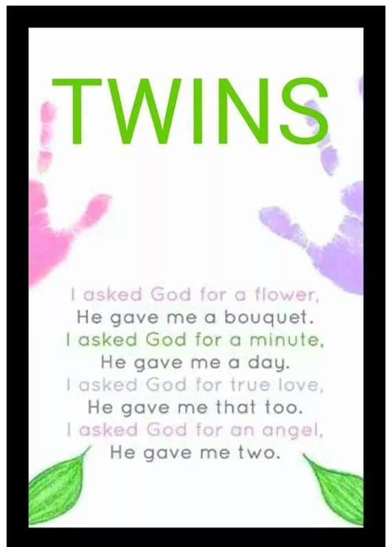 Twin Quotes