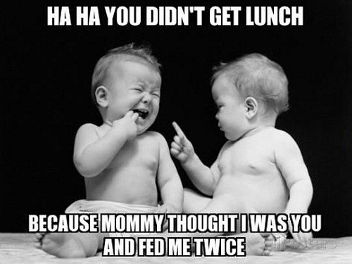 Funny Twin Quotes 60+ Best Funny And Cute Twin Quotes With Images Funny Twin Quotes