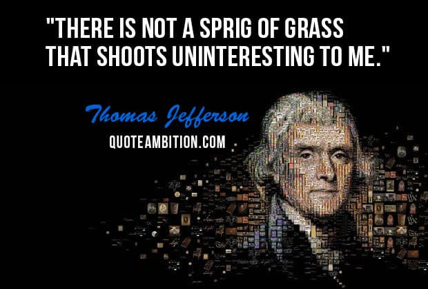 Thomas Jefferson Quote Impressive Top 48 Famous Thomas Jefferson Quotes