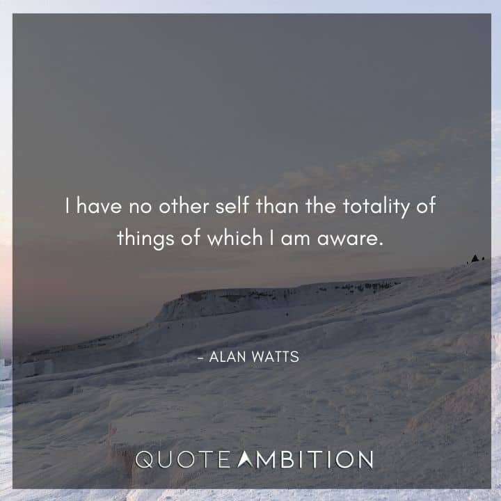 Alan Watts Quote - I have no other self than the totality of things of which I am aware.