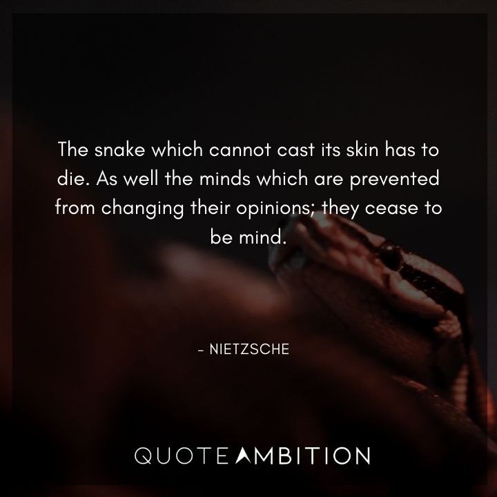 Friedrich Nietzsche Quote - The snake which cannot cast its skin has to die.