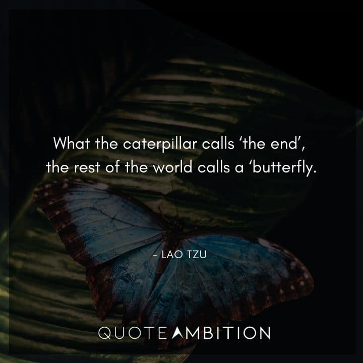 Lao Tzu Quote - What the caterpillar calls 'the end' the rest of the world calls a 'butterfly'