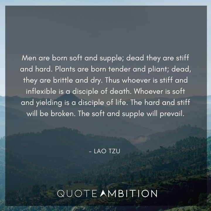 Lao Tzu Quote - Men are born soft and supple; dead they are stiff and hard.
