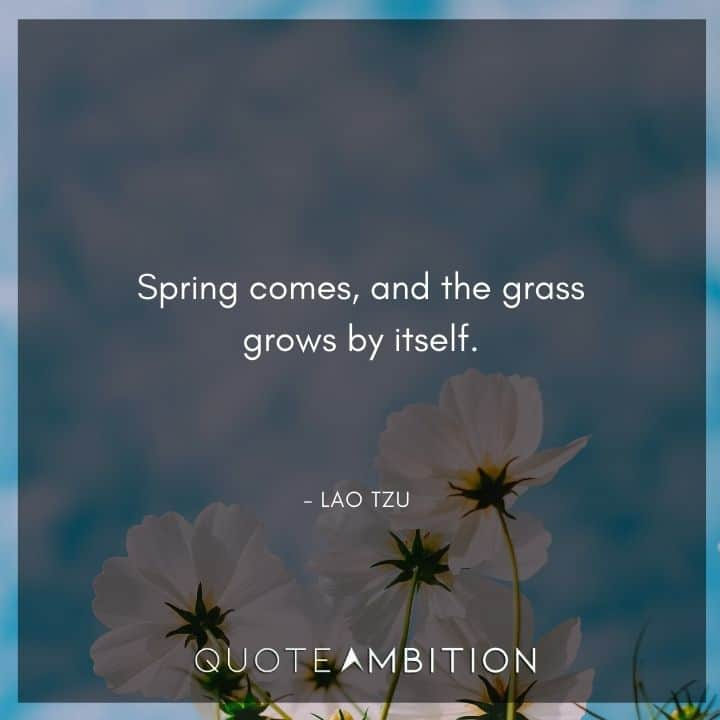 Lao Tzu Quote - Spring comes, and the grass grows by itself.