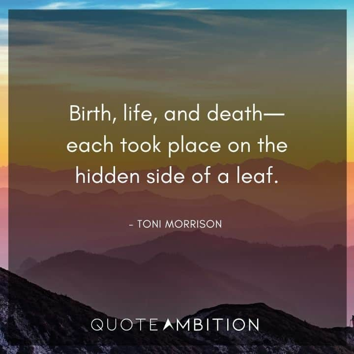 Toni Morrison Quote - Birth, life, and death each took place on the hidden side of a leaf