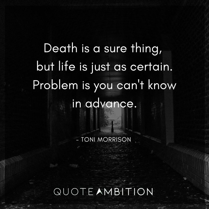 Toni Morrison Quote - Death is a sure thing, but life is just as certain.