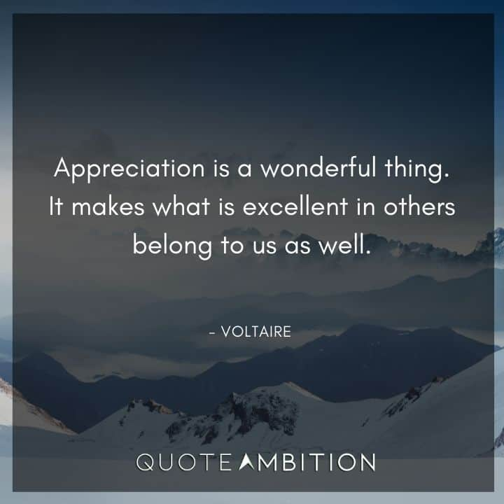 Voltaire Quote - Appreciation is a wonderful thing