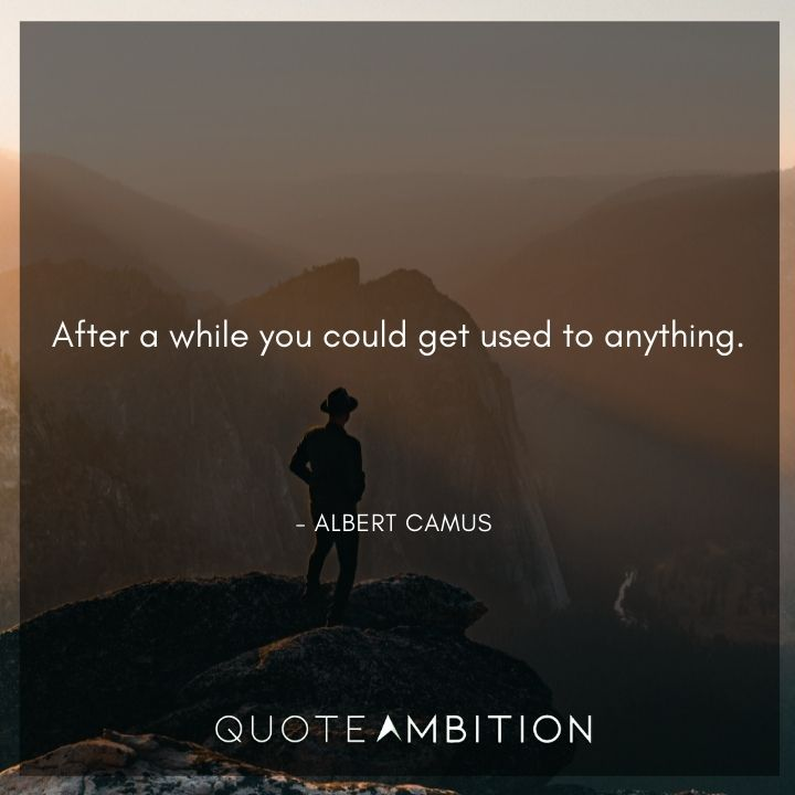 Albert Camus Quote - After a while you could get used to anything.