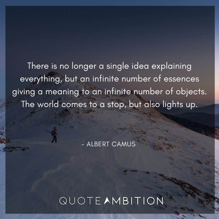 Albert Camus Quote - There is no longer a single idea explaining everything, but an infinite number of essences giving a meaning to an infinite number of objects.