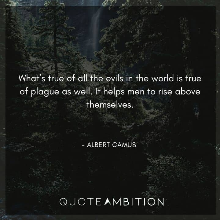 Albert Camus Quote - What's true of all the evils in the world is true of plague as well.
