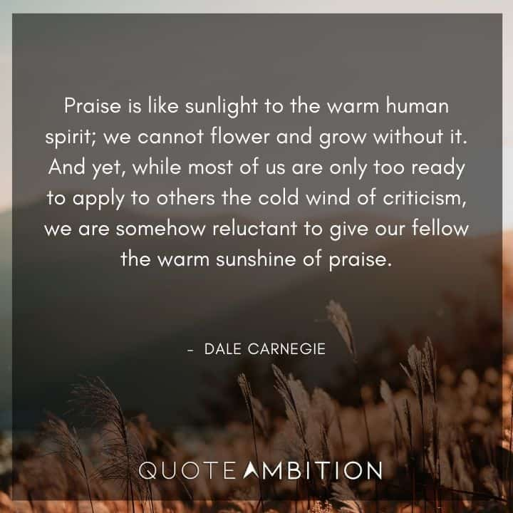 Dale Carnegie Quotes - Praise is like sunlight to the warm human spirit.