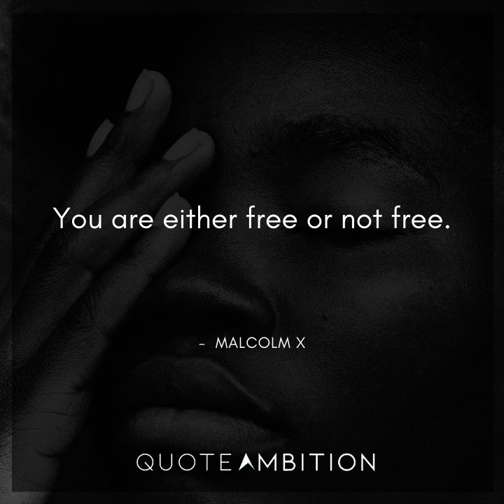 Malcolm X Quotes - You are either free or not free.