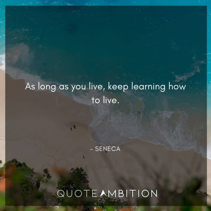 Seneca Quote - As long as you live, keep learning how to live.