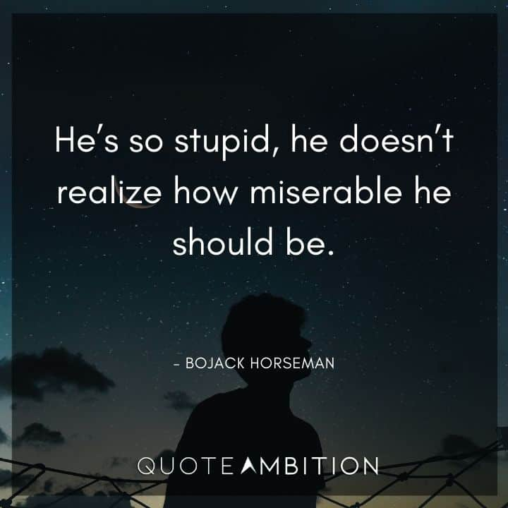 BoJack Horseman Quote - He's so stupid, he doesn't realize how miserable he should be.