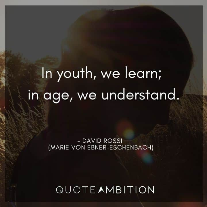 Criminal Minds Quote - In youth, we learn. In age, we understand.