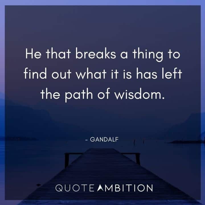 Gandalf Quote - He that breaks a thing to find out what it is has left the path of wisdom.