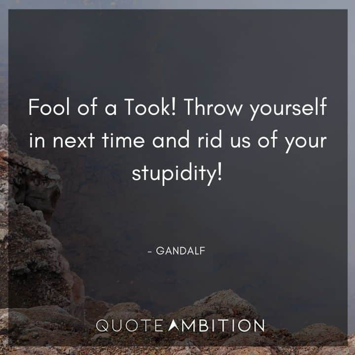 Gandalf Quote - Fool of a Took! Throw yourself in next time and rid us of your stupidity!