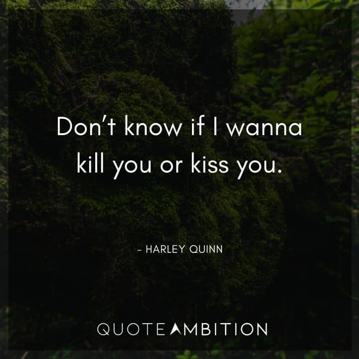 Harley Quinn Quote - Don't know if I wanna kill you or kiss you.