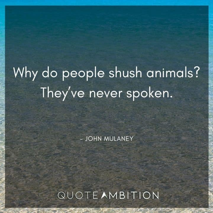 John Mulaney Quote - Why do people shush animals? They've never spoken.