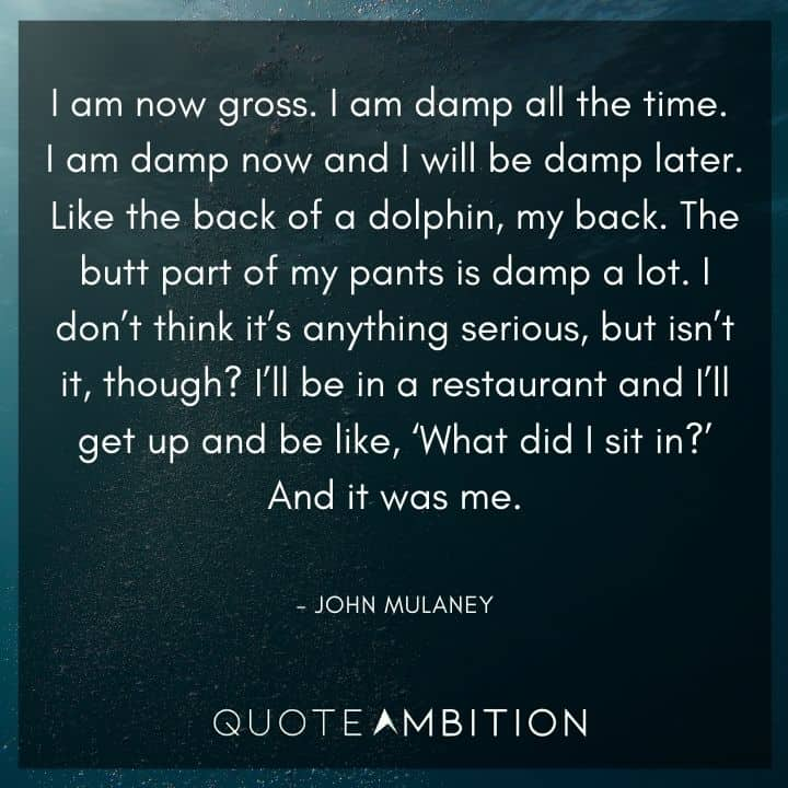 John Mulaney Quote - I am now gross. I am damp all the time. I am damp now and I will be damp later.