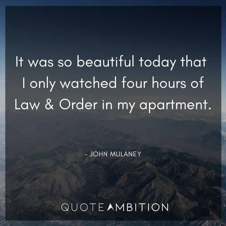 John Mulaney Quote - It was so beautiful today that I only watched four hours of Law & Order in my apartment.