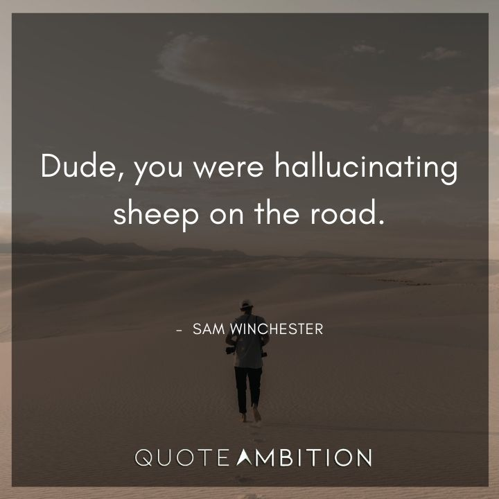 Supernatural Quote - Dude, you were hallucinating sheep on the road.