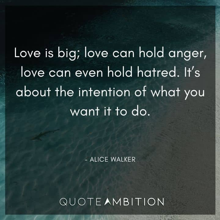 Alice Walker Quote - Love is big; love can hold anger, love can even hold hatred.