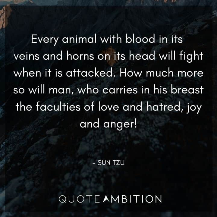 Sun Tzu Quote - How much more so will man, who carries in his breast the faculties of love and hatred, joy and anger!