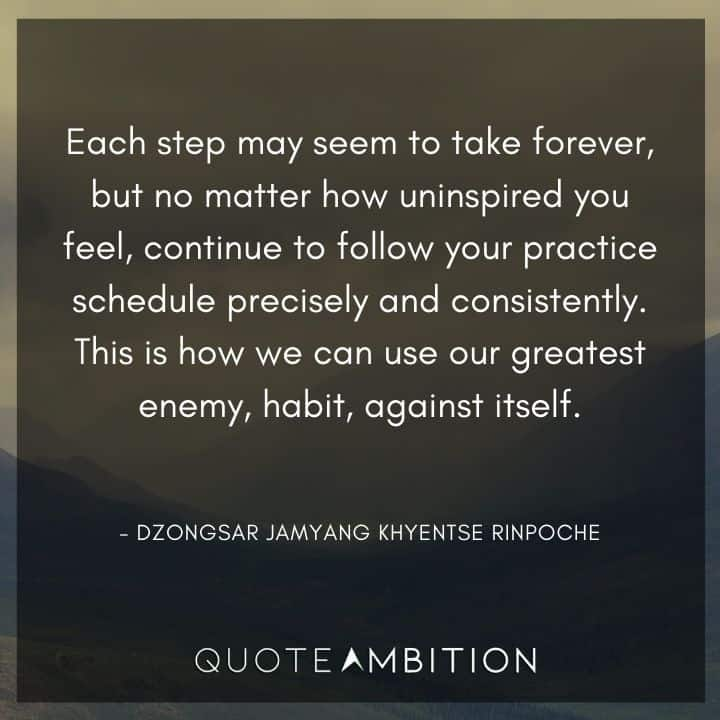 Consistency Quotes - Continue to follow your practice schedule precisely and consistently. This is how we can use our greatest enemy, habit, against itself.
