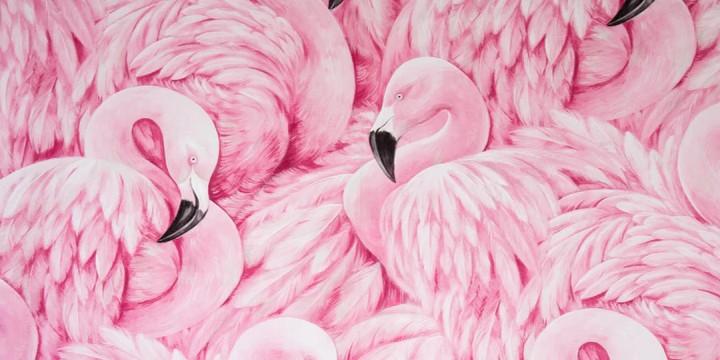 Flamingo Quotes