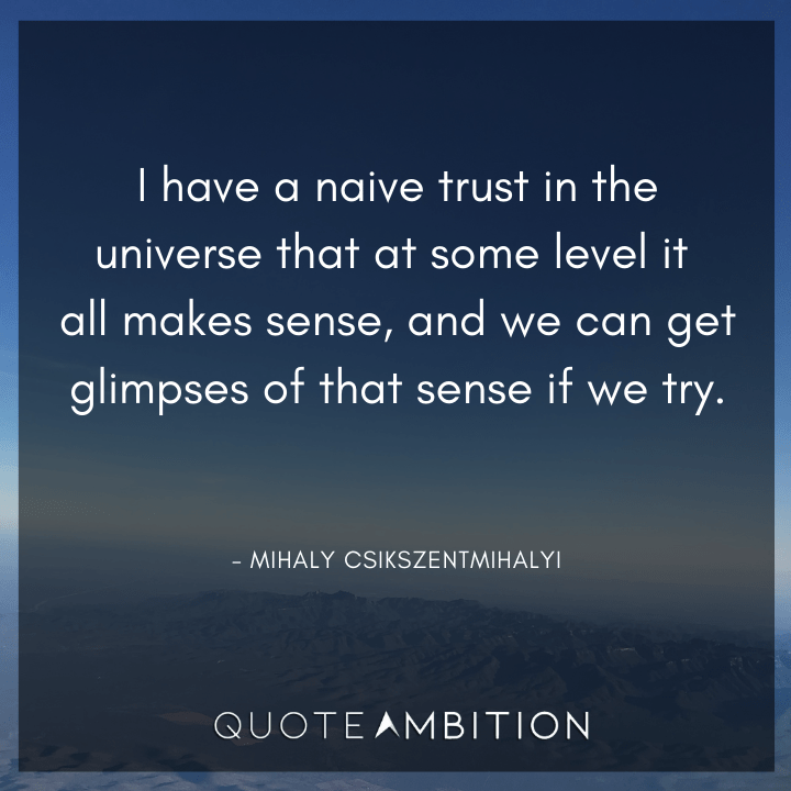 Universe Quotes - I have a naive trust in the universe that at some level it all makes sense.