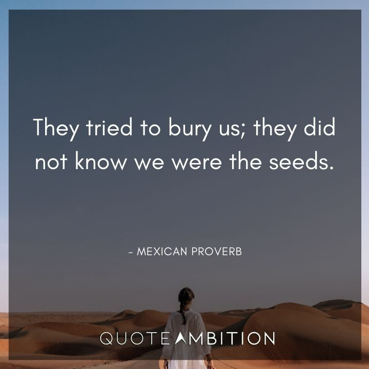 Inspirational Quotes for Women - They tried to bury us; they did not know we were the seeds.